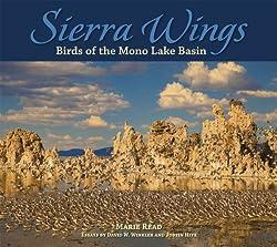 Sierra Wings: Birds of the Mono Lake Basin (Companion Press)