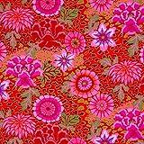 Funky Fabric by Kaffe Fassett für Skibrille