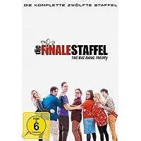 The Big Bang Theory - Die komplette zwölfte Staffel [3 DVDs]