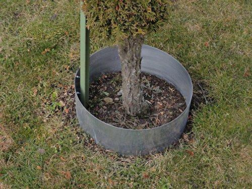 Rasenkanten Baumring aus Metall durchm. 37 cm x 17,5 cm - 3er Set