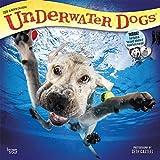 Underwater Dogs 2018 Calendar