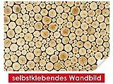 XXL-Tapeten selbstklebendes Wandbild Wood Stump – leicht zu verkleben – Wallprint, Wallpaper, Poster, Vinylfolie mit Punktkleber für Wände, Türen, Möbel und alle glatten Oberflächen von Trendwände