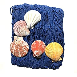 SannysisNáutica Red de Pesca Decoración con Conchas Marinas, Estilo Mediterráneo para la Decoración del Hogar, 200 cm x 150 cm (Azul)