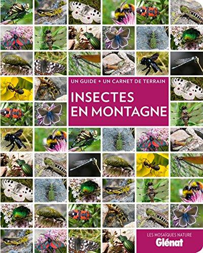 Insectes en montagne par Blandine Delenatte