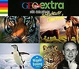 GEOlino extra Hör-Bibliothek ? Abenteuer Tierreich: Die Box: Die spannende Welt der Tiere, Seltene Arten, Pferde, Raubtiere - Martin Nusch