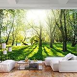 decomonkey | Fototapete Wald 400x280 cm XL | Tapete | Wandbild | Wandbild | Bild | Fototapeten | Tapeten | Wandtapete | Wanddeko | Wandtapete | Bäume Natur Sonne Grün | FOB0267a84XL