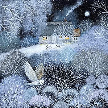 Charity Christmas Cards - Winter Garden - 8 Christmas Cards for ...