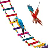 Jouets pour Oiseaux pour Perroquet, échelle, balançoire, Dressage Pont Arc-en-Ciel pour perroquets, perruches, Conures, cokat