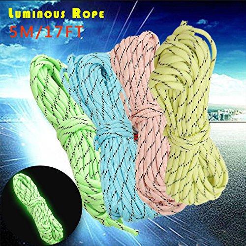 Bazaar 5M 17ft 9-Strand Luminous Nylon geflochtenen Seil Glühen im dunklen Paracord Fallschirm-Schnur 550LB -