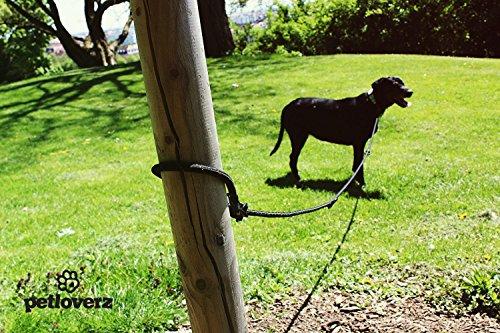 4-fach verstellbare Hundeleine | 2,80m lang | Doppelleine / Laufleine / Langlaufleine | geflochten | schwarz | Nylon | Leder-verstärkte Nähte | eingenähte Reflektoren | PETLOVERZ - 5