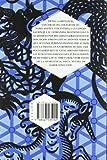 Libros Descargar en linea Memorias de Idhun La resistencia Libro II Revelacion 2 Memorias de Idhun (PDF y EPUB) Espanol Gratis
