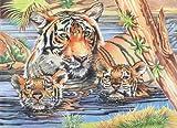 Reeves Malen nach Zahlen Buntstifte Tiger&Junge