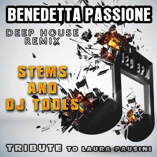 Benedetta passione deep house remix instrumental de re for Instrumental house music