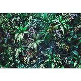 Cassisy 3x2m Vinile Primavera Foto da Sfondo Natura Giardino verticale Carta da parati verde foglia tropicale Fondali Fotografia Partito Photo Studio Puntelli Photo Booth