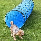 Spiel- und Spaß-Tunnel, 3 m lang, ø 60 cm, blau, Agility-Training