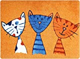 deco-mat Fußmatte Katze – Fussmatte Innen, Rutschfest, waschbar – Schmutzfangmatte - Fussabtreter - Fussabstreifer 50x70 cm