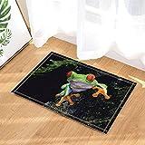 cdhbh Wild Animal Decor, Safari rote Augen Frosch liegend auf rutschigen Stein Wand Bad Teppiche rutschhemmend Fußmatte Boden Eingänge Innen vorne Fußmatte Kinder Badematte 39,9x 59,9cm Badezimmer Zubehör