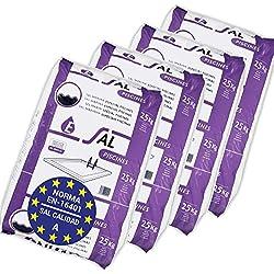 Pack de 100 Kg (4 sacos de 25 kg.) ENISAL Sal Especial Piscinas – Cumple con la norma europea EN 16401/A (Sal Calidad A para piscinas de electrólisis Salina)