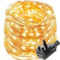LE Waterproof 10m 100 LED Copper Wire Lights, Power Adapter Included, Fairy Starry String Lights, Decorative Rope Lights Firefly Lights for Christmas, Party, Valentine's Day, Wedding, Garden, Festival
