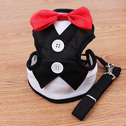 Pets Evening Dress with Tie Chest Back Thoracic dorsal Type Clothes Leash for Small Animals Puppy Dog and Cat Color Black (L) by ColyBeauty.cor