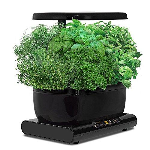 miracle-gro-aerogarden-harvest-with-gourmet-herb-seed-pod-kit-black