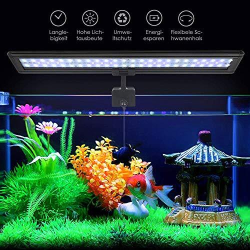 Koopower 30 LED Aquarium Beleuchtung, hellste LED Fisch Clip Aquarium Lampe, Verstellbarer Halterung für 30cm-45cm Aquarium (Weiß & Blau Licht) (30 Beleuchtung Cm Aquarium)