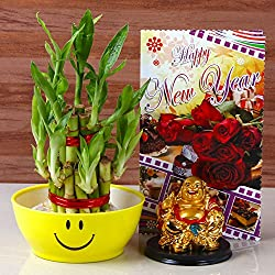 Giftacrossindia New Year Collection of Goodluck Wish Combo