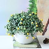 GSYLOL 1 Satz Künstliche Blume Gefälschte Blumenerde Bonsai Für Hochzeit Home Party Dekorative 5 Farben, grün