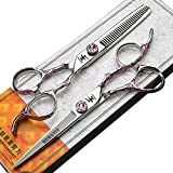 HEMATIT 6 Zoll professionelle Haarschere Set, rosa Rose Friseur schneiden und Effilierschere
