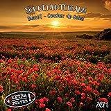Sonnenuntergang - Sunset - Coucher de Soleil 2020