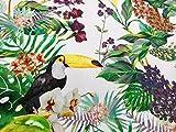 HomeBuy Tropical bird & Garden Stoff Vorhang Polster Baumwolle Digital Print–280cm extra breit (von der)