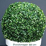 TLC Ø ca. 27 cm künstliche Buchsbaumkugel - sehr natürlich wirkend (30)