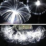 elegantstunning Lichterkette 2.5M 10 LED Lichtwellenleiter Bunte Batteriebetriebene Lampe Weihnachtsbeleuchtung