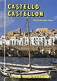 Castelló de la Plana/Castellón de la Plana (Guías artístico - turísticas)