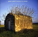 Songtexte von Joe Lally - There to Here