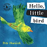 Hello, Little Bird (Look Inside)