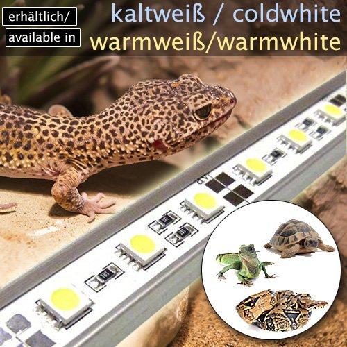LED-Beleuchtung (kaltweiß, 60cm) Simulator Steuerung Terrarium/Aquaterrarium Reptilien Amphibien Spinne Insekt TB4