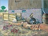 Posterlounge Leinwandbild 40 x 30 cm: Lämmer und Zicklein von John Bindon/MGL Licensing - fertiges Wandbild, Bild auf Keilrahmen, Fertigbild auf Echter Leinwand, Leinwanddruck
