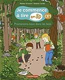 """Afficher """"Promenons-nous dans les bois, ce1"""""""