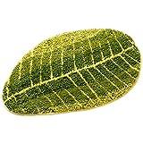 Pragoo Weiche grüne Blätter Teppich nicht Beleg Bereich Teppich Moderner Wohnen Schlafzimmer Teppichboden Matten (45*75cm)