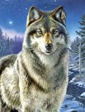 Reeves Artists Collection, Wolf