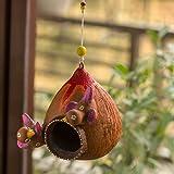 ExclusiveLane 'Cuckoo Family' Hand-Painted Bird Feeder Balcony and Garden Decorative Terracotta Hanging Bird House, Earthen B