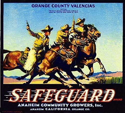 Zoom IMG-3 ablertrade anaheim safeguard cowboys orange