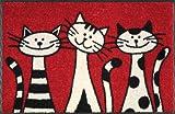 Wash&Dry 030812 Fußmatte Three Cats 50 x 75 cm