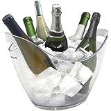Vinbouquet Vin Bouquet FIE 029 Seau à glaçons, 6, idéal pour Refroidir Vos Bouteilles en Couleur Claire, Plastic, Transparent