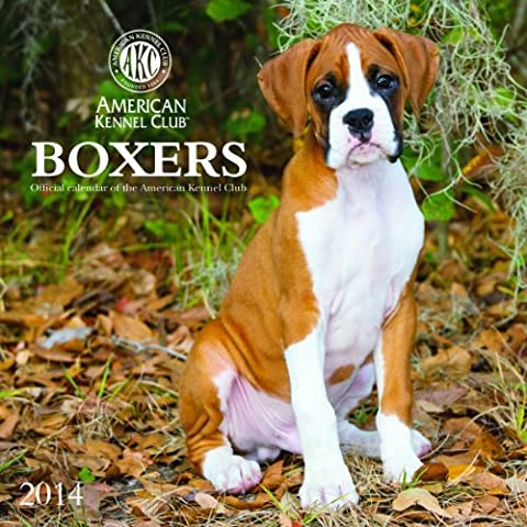 2014Calendari Boxer American Kennel Club 2014calendario da