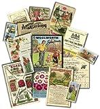 """Englisch Lernen """"The Garden"""" ca 20th Century Emgland Reproduktionen rund um den Garten, Werbung, Zeitschriften und Mehr!"""