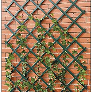 Provence Outillage 06513 Treillis Extensible en PVC Vert 0,50 x 1,50 m