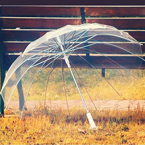 Edge to 16 Knochen-Regenschirm-Retro- Transparenter Regenschirm-langer Handgriff-transparenter Regenschirm-kreativer Regenschirm ( Farbe : Weiß , größe : Straight bar ) (Farbe Straight Edge)