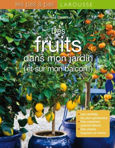 Vignette du document Des fruits dans mon jardin (et sur mon balcon !)